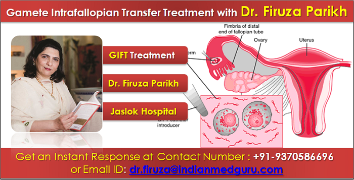 Gamete Intrafallopian Transfer in India, top Surgeons for Gamete Intrafallopian Transfer in India, Best Hospital for Gamete Intrafallopian Transfer in India, Gamete Intrafallopian Transfer cost India, Dr. Firuza Parikh, Best Obstetrics and Gynaecologist in India, Dr. Firuza Parikh Famous IVF specialist, Dr. Firuza Parikh contact number, Dr. Firuza Parikh Email Address, Book an appointment with Dr. Firuza parikh,