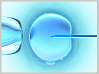 Best in vitro fertilization doctors India, top in vitro fertilization clinics India, best ivf experts India