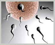 infertility treatment India, cost infertility treatment India